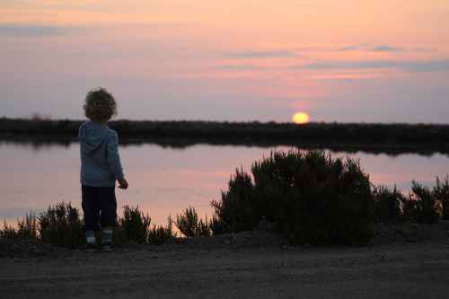 photo of toddler standing near lake